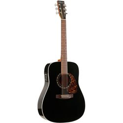 Norman ENCORE B20 BLACK HG SALE