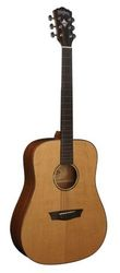 Washburn WD160SW SALE